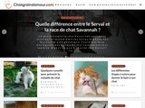 Chatgraindamour.com