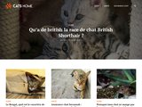 Cats-home.fr